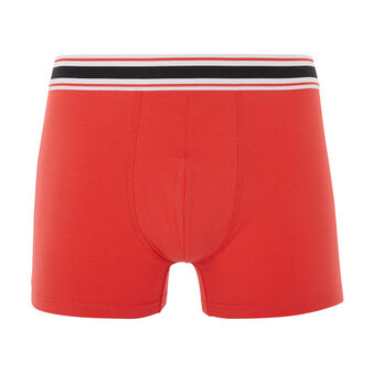Boxer corail donothiz coral.